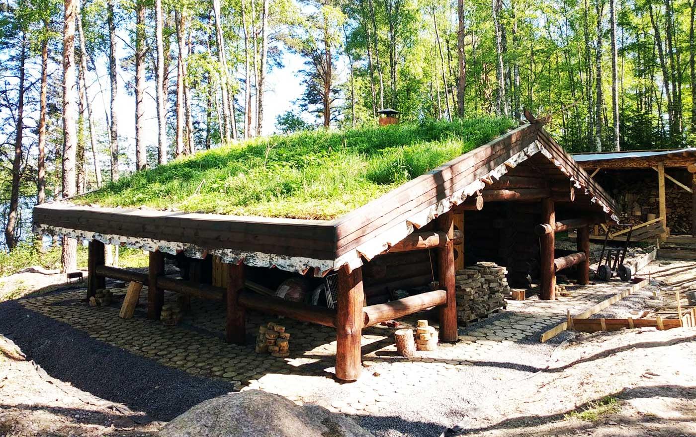 Дом из бревна с травяной крышей