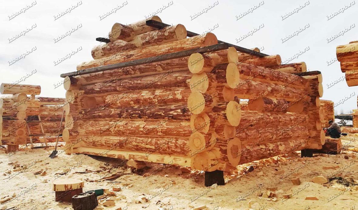 Рубленая-баня-6х6-на-производстве