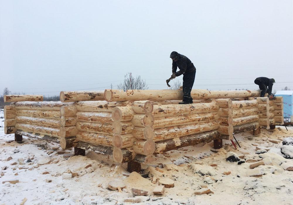 Рубка сруба из зимнего леса