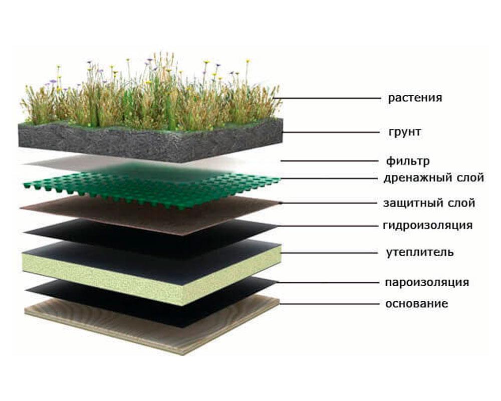 Пирог зеленой крыши